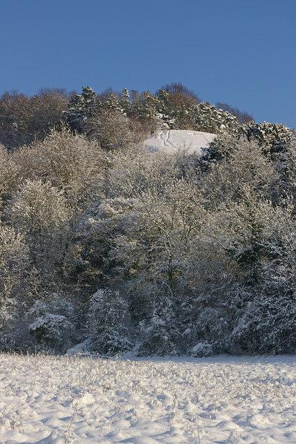 Meadow, Queen's Park, in snow