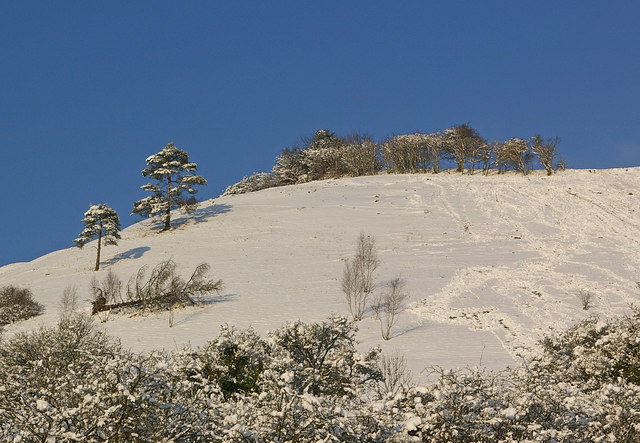 Looking up to Colley Hill in snow