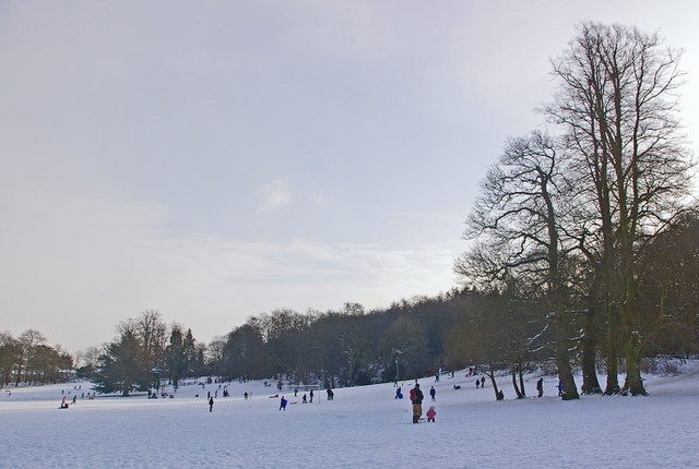Priory Park in the snow