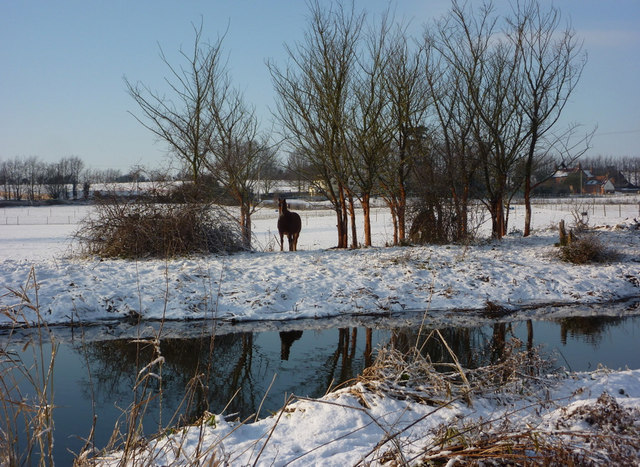 Looking across the River Gipping