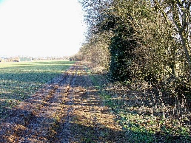 Bridleway to Ascott