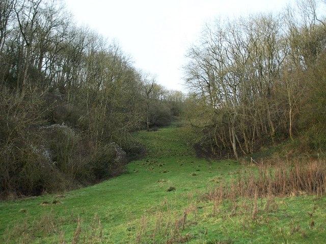 Gap through woodland, Tyley Bottom