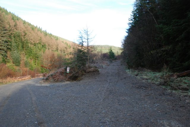 Forestry road junction, Cwm Nele