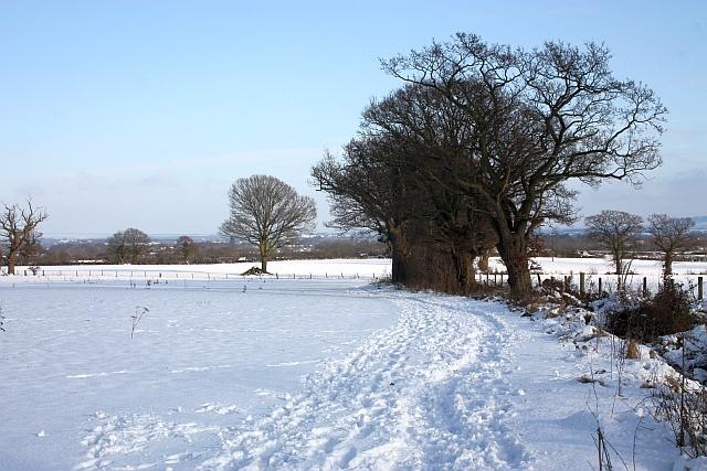 Bridleway to Hanley Swan