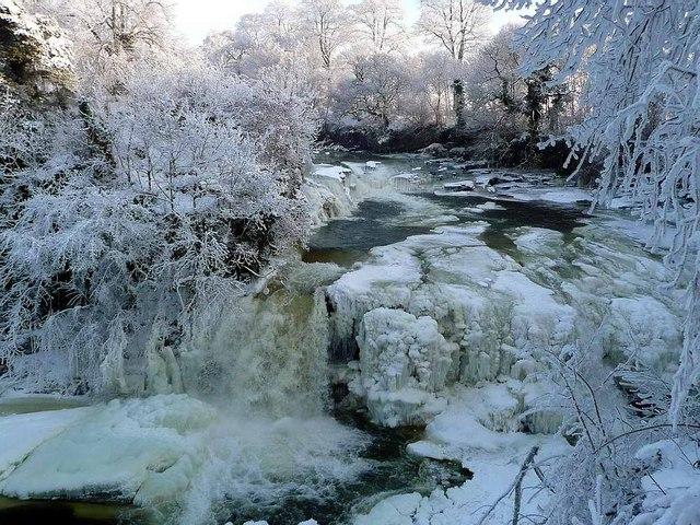 Frozen Bonnington Linn