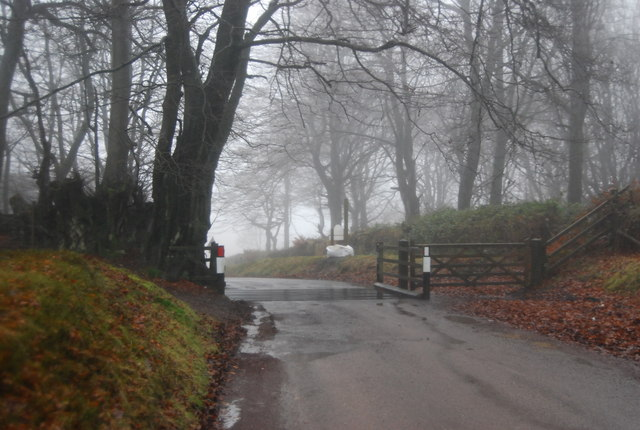 Cattle grid at the top of Crowcombe Hill