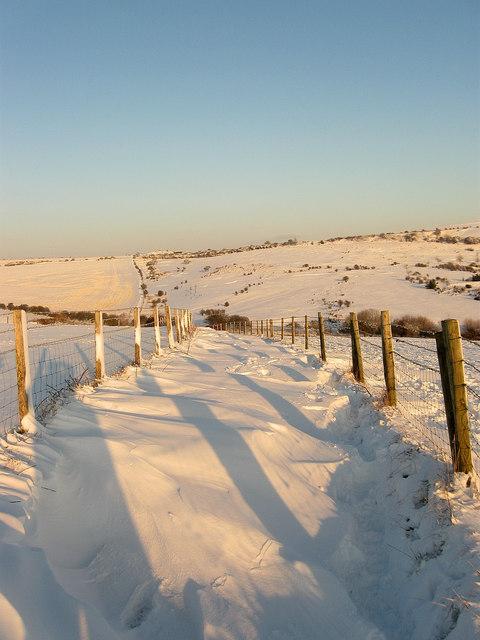 Drifting Snow, Monarch's Way