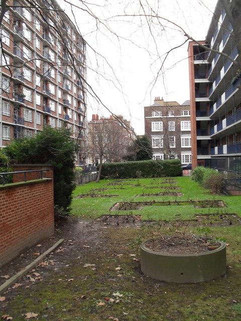 Garden in New North Street