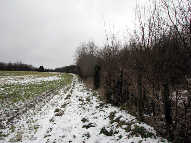Trackbed of the Mildenhall Branch near Fen Ditton