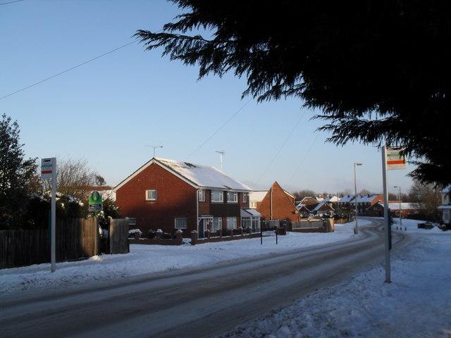 Snowy bus stops in Park Lane