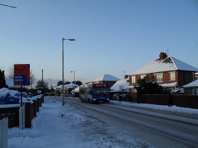 Bus in a snowy Park Lane