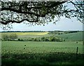 SU4382 : View from Farnborough Rectory by Fly