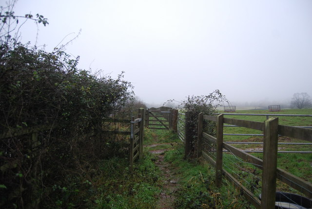 Gates on the Quantock Greenway