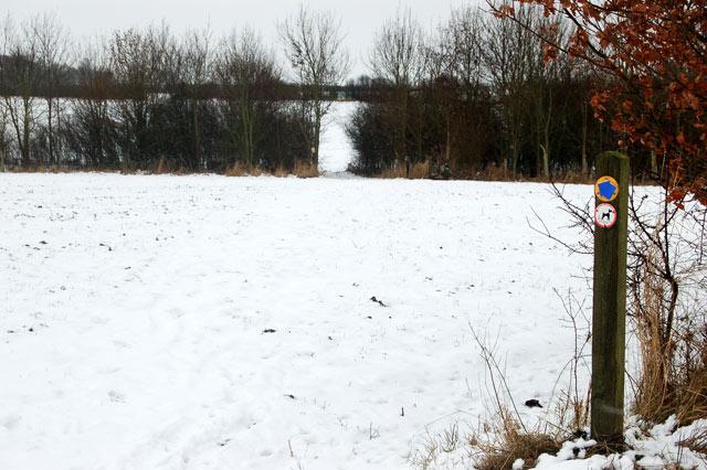 Waymark on bridleway south of Broadwell House Farm