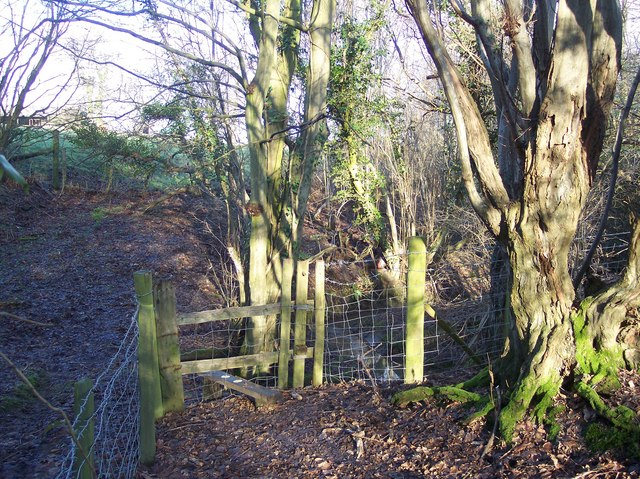 Stile in Coldharbour Shaws