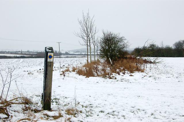Waymark on bridleway east of Pike Hall Farm (1)