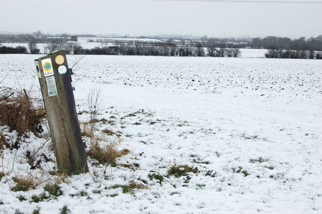 Waymark on bridleway east of Pike Hall Farm (2)