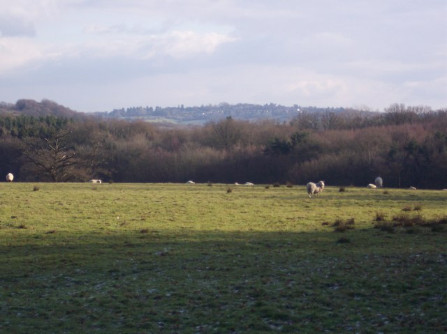 View of Brenchley