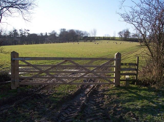 Gate, Stile and Footpath junction near Hayden Wood