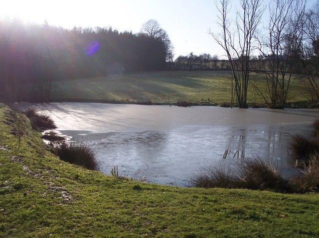 Iced Pond near Windmill Farm
