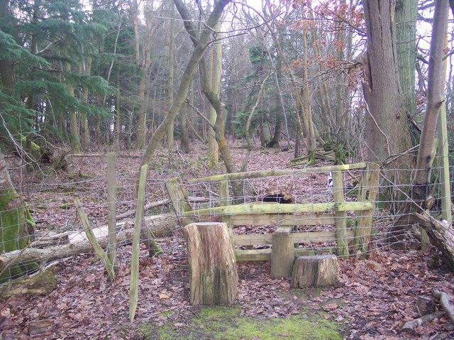 Stile into Hayden Wood