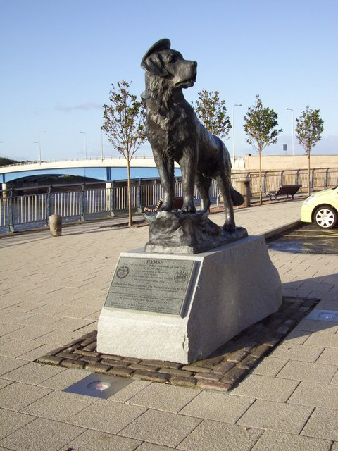 Bamse the famous sea dog of Montrose