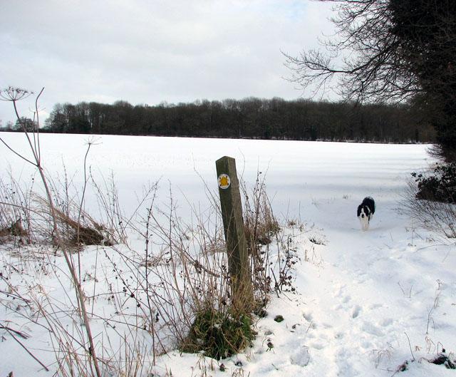 Crossing Boudica's Way