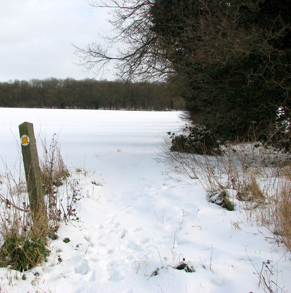Footpath to Arminghall