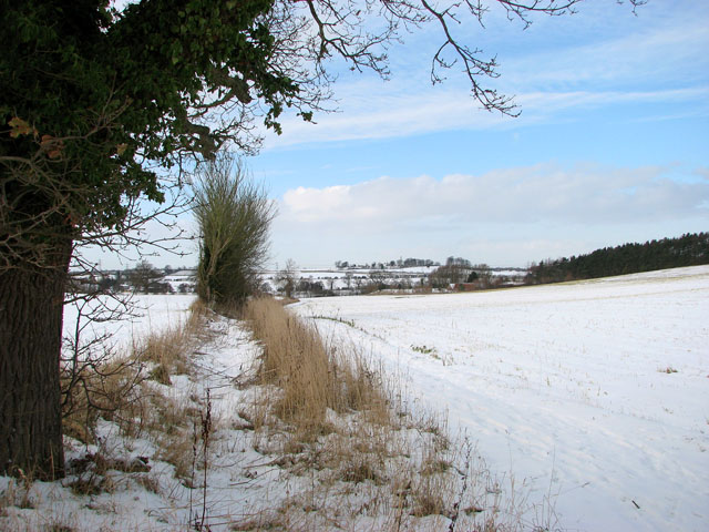 A snowy field boundary