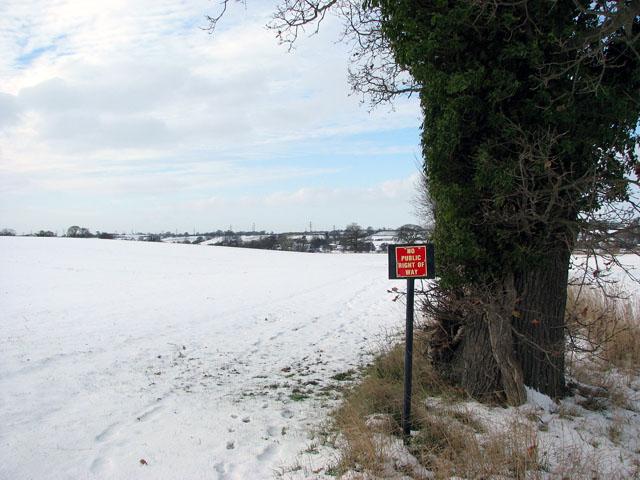 Snowy fields east of Stoke Road