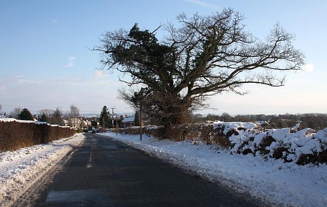 The Upper Welland Road