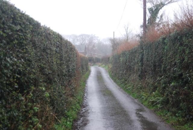 Halsway Lane