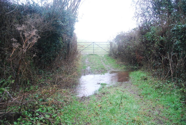 Ford off Halsway Lane