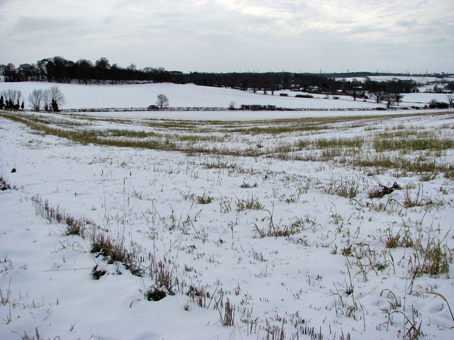 Snowy fields east of Stoke Road