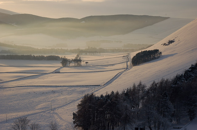 A winter view of Cademuir