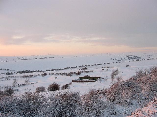 Northlane Barn (2)