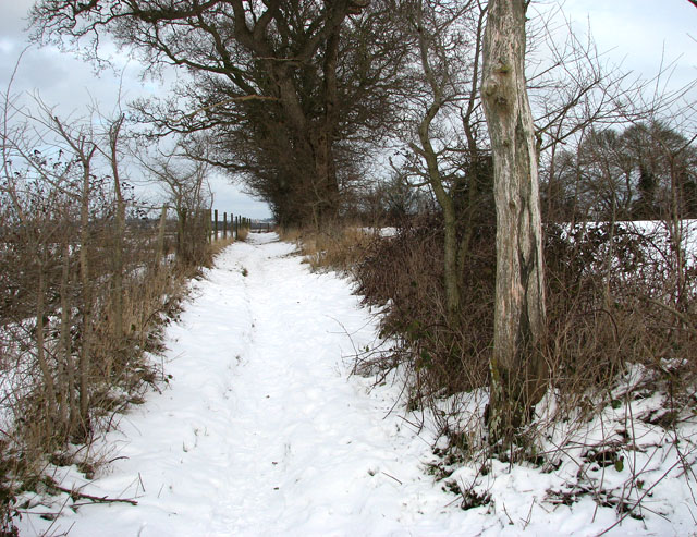 Skirting the eastern edge of the chalk pit