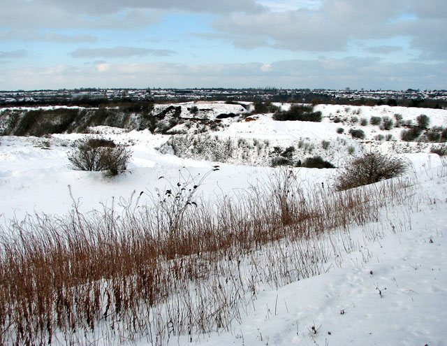 View across the chalk pit from its eastern perimeter