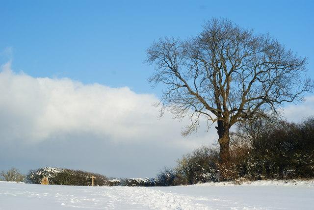 Top of Ockley Hill, Chaldon, Surrey