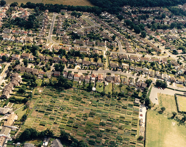 Daws Heath Road and Hadleigh allotments