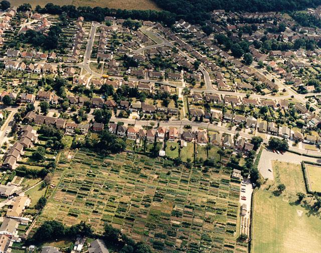 Daws Heath Road and Hadleigh allotments