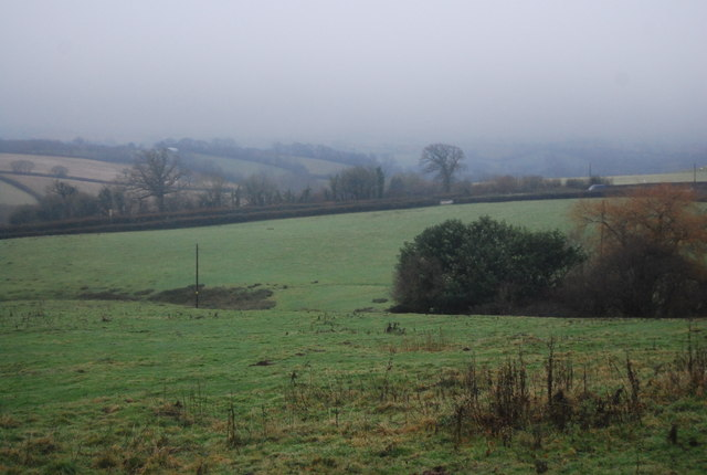 Small valley off Halsway Lane