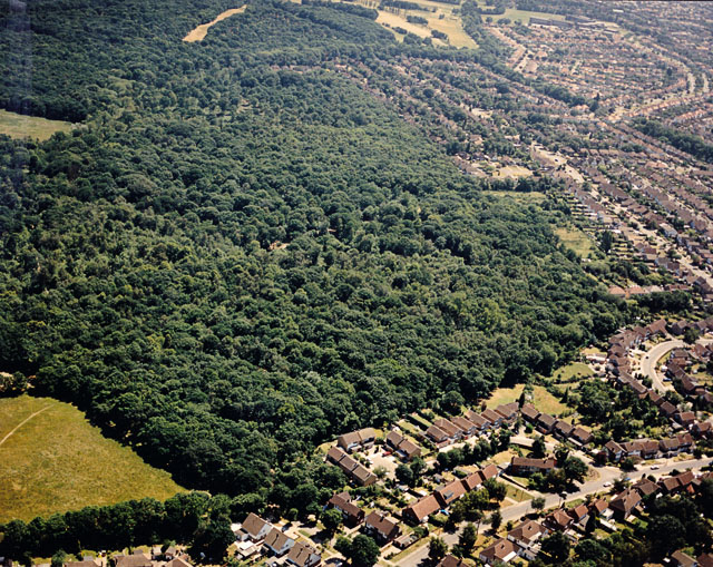 Aerial view of Belfairs Nature Reserve, Hadleigh