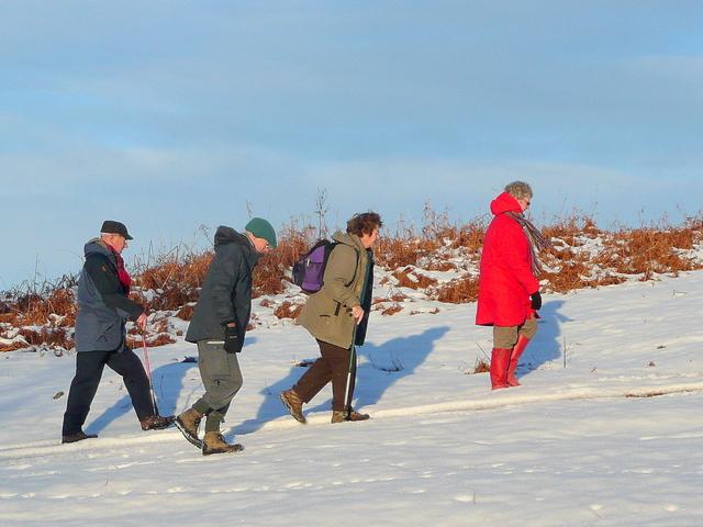 Winter walkers 1