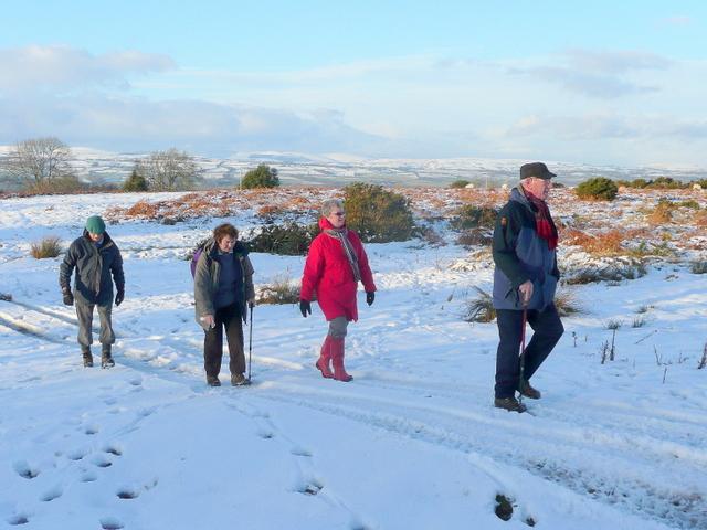 Winter walkers 2