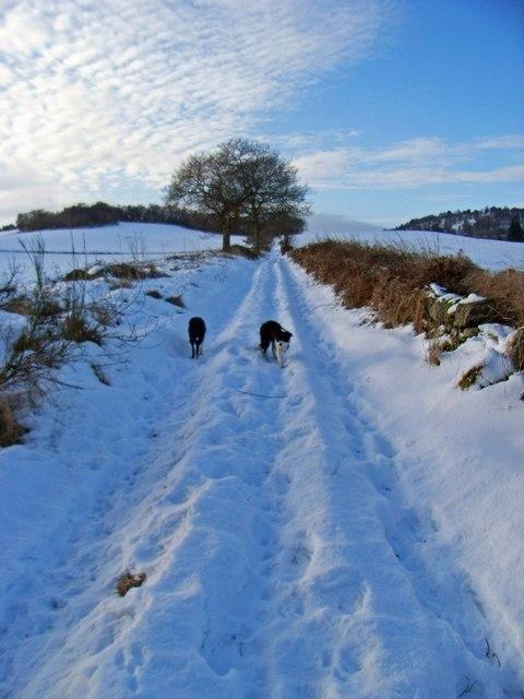 Footpath near Gilmerton