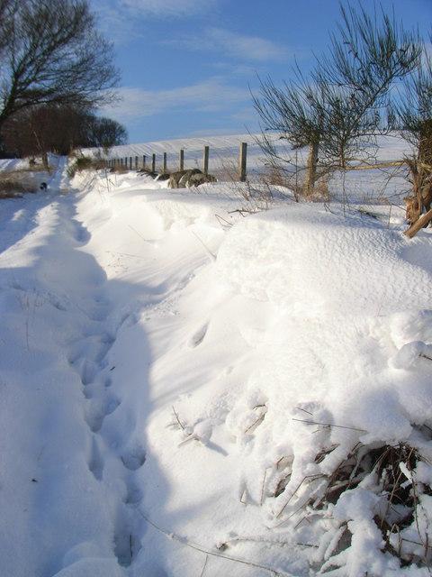 Snowbank near Gilmerton