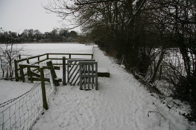 Zoe's Gate