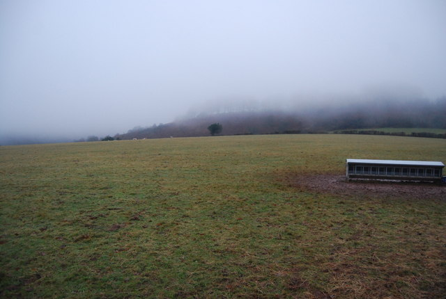 Field & feeding trough on the edge of the Quantock Hills