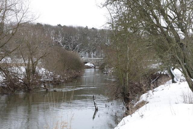 River Derwent looking South towards Howsham Bridge